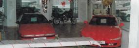 1993:<br>Februar: Eröffnung der neuen Ausstellungshalle und 10-jähriges Jubiläum